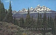 Misc, Wyoming Postcard      ;      Misc, WY