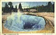 Morning Glory Pool - Yellowstone Park, Wyoming WY Postcard