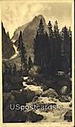 The Glacier - Grand Tetons, Wyoming WY Postcard