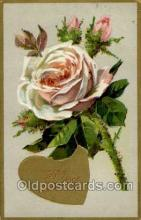val050060 - Valentines Day Postcard Postcards