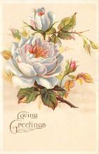 val300051 - Loving Greeting Valentines Day Postcard