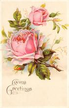 val300139 - Rose, Loving Greetings Postcard