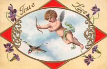 val300505 - True Love Valentines Day Postcard