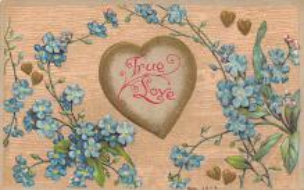 val300651 - Valentines Day Postcard