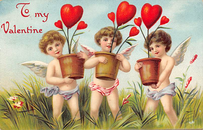 Valentines Day Postcards  - Old Antique Post Card