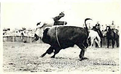 wes000385 - Paul Brewer Western Cowboy, Cowgirl Postcard Postcards