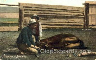 Shoeing a Broncho