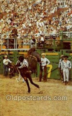 wes002720 - Cowboy Western Old Vintage Antique Postcard Post Cards