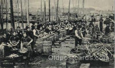 Herring Salting, Arbroath