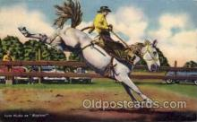 wes000081 - Western Postcard
