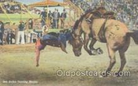wes000147 - Western Cowboy Postcard Postcards