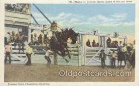 wes000152 - Western Cowboy Postcard Postcards