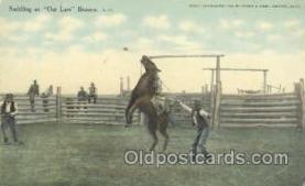 wes000157 - Western Cowboy Postcard Postcards