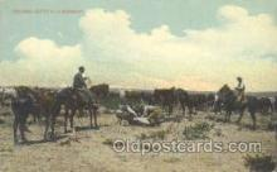 wes000162 - Western Cowboy Postcard Postcards