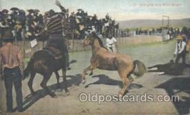 wes000176 - Western Cowboy Postcard Postcards