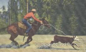 wes000195 - Western Cowboy Postcard Postcards