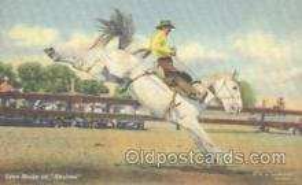 wes000197 - Western Cowboy Postcard Postcards