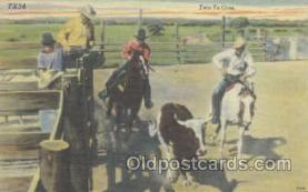 wes000206 - Western Cowboy Postcard Postcards