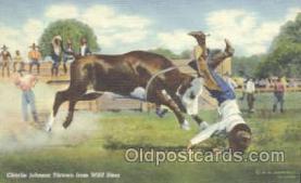 wes000207 - Western Cowboy Postcard Postcards