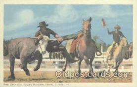 wes000208 - Western Cowboy Postcard Postcards