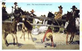 wes000230 - Western Cowboy Postcard Postcards