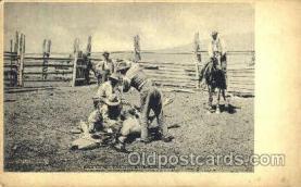 wes000233 - Western Cowboy Postcard Postcards