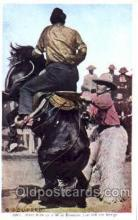 wes000251 - Western Cowboy Postcard Postcards