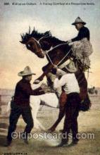 wes000254 - Western Cowboy Postcard Postcards