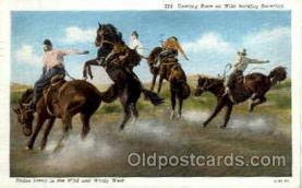 wes000267 - Wild Bucking Bronchos, Western Cowboy Cowgirl Postcard Postcards