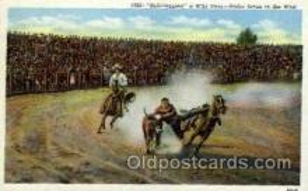 wes000268 - Wild Steer, Western Cowboy Cowgirl Postcard Postcards