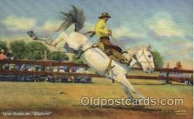 wes000270 - Lynn Husky, Western Cowboy Cowgirl Postcard Postcards