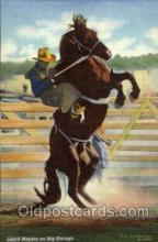 wes000294 - Lloyd Meyers, Western Cowboy Cowgirl Postcard Postcards