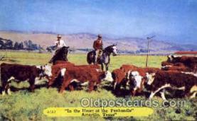 wes000321 - Amarillo, Texas, Cowboy Western Postcard Postcards
