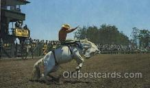wes000334 - California Rodeo Western Cowboy, Cowgirl Postcard Postcards