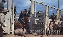 wes000340 - Rodeo Scene Western Cowboy, Cowgirl Postcard Postcards