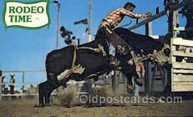 wes000343 - Brahma Bull Riding Western Cowboy, Cowgirl Postcard Postcards