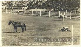 wes000363 - Stampede Winnepeg Western Cowboy, Cowgirl Postcard Postcards