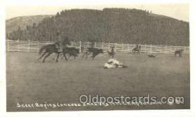 wes000375 - Steer Roping Western Cowboy, Cowgirl Postcard Postcards