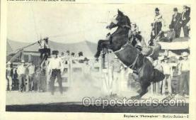wes000384 - Paul Gould Western Cowboy, Cowgirl Postcard Postcards