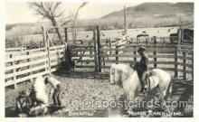 wes000390 - Branding Time Western Cowboy, Cowgirl Postcard Postcards
