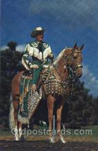 wes000396 - Western Cowboy, Cowgirl Postcard Postcards