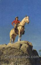 wes000397 - Cowboy & Palomino Western Cowboy, Cowgirl Postcard Postcards