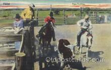 wes000416 - Rodeo Scene Western Cowboy, Cowgirl Postcard Postcards