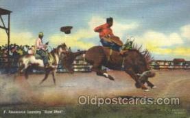 wes000426 - F. Stevenson  Western Cowboy, Cowgirl Postcard Postcards
