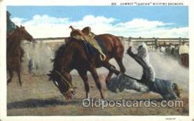 wes000434 - Bucking Bronco Western Cowboy, Cowgirl Postcard Postcards