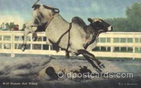 wes000444 - Wild Brahma Bull Riding Western Cowboy, Cowgirl Postcard Postcards