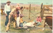 wes001103 - Brading time on the rance, Cowboy Western, Postcard Postcards