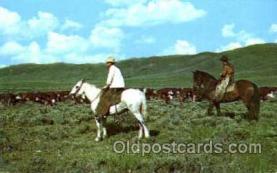 wes001265 - Western, Cowboy, Cowgirl, Postcard Postcards