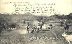 wes001267 - Western, Cowboy, Cowgirl, Postcard Postcards