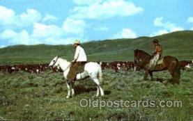 wes001277 - Western, Cowboy, Cowgirl, Postcard Postcards